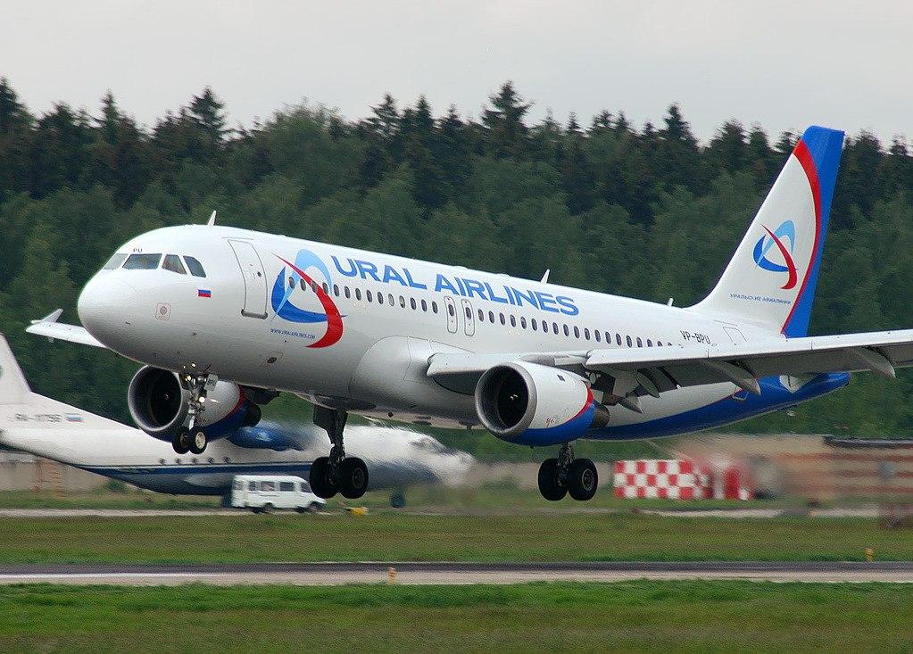 44_flyorder.ru